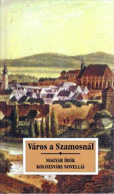 Sas Péter - Város a Szamosnál [antikvár]