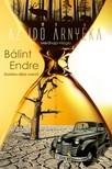 Bálint Endre - Az idő árnyéka [eKönyv: epub, mobi]