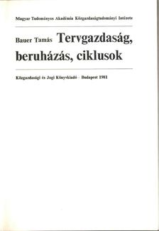 Bauer Tamás - Tervgazdaság, beruházás, ciklusok [antikvár]