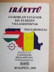 Bihari Péter - Iránytű - Magyarország [antikvár]