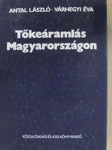 Antal László - Tőkeáramlás Magyarországon [antikvár]