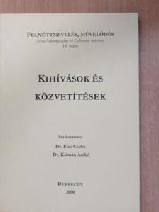 D. Rubovszky Éva - Kihívások és közvetítések [antikvár]