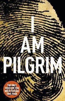 Terry Hayes - I Am Pilgrim [antikvár]