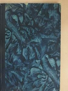 Ifj. Alexandre Dumas - L'Étrangére [antikvár]