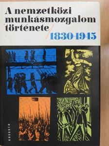 Dr. Babirák Ilona - A nemzetközi munkásmozgalom története 1830-1945 [antikvár]