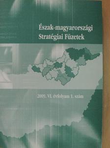 Dabasi Halász Zsuzsanna - Észak-magyarországi Stratégiai Füzetek 2009/1. [antikvár]