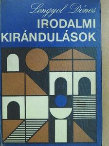 Lengyel Dénes - Irodalmi kirándulások [antikvár]