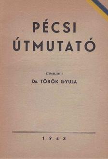 Török Gyula - Pécsi útmutató [antikvár]