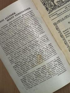 Nagy Erzsébet - Szent Terézke rózsakertje 1932. december 17. [antikvár]