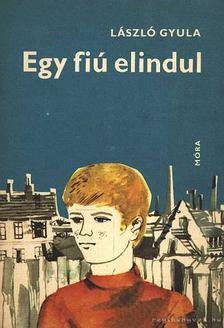 László Gyula - Egy fiú elindul [antikvár]