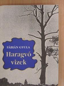 Fábián Gyula - Haragvó vizek [antikvár]