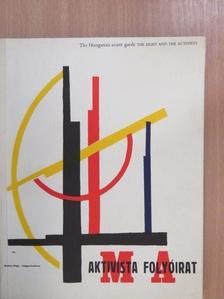 Aknai Tamás - The Hungarian avant garde [antikvár]