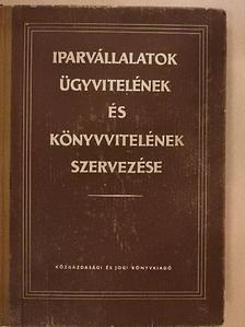 Balázsy György - Iparvállalatok ügyvitelének és könyvvitelének szervezése [antikvár]