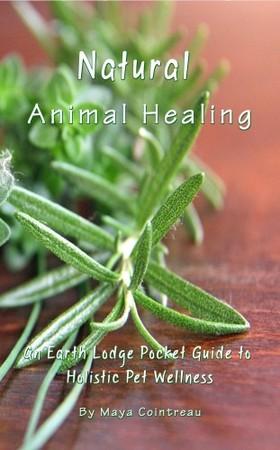Cointreau Maya - Natural Animal Healing - An Earth Lodge Pocket Guide to Holistic Pet Wellness [eKönyv: epub, mobi]