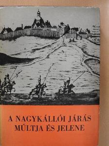 Babosi János - A nagykállói járás múltja és jelene [antikvár]