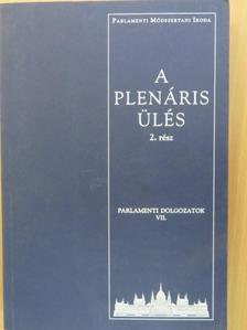 B. Kelemen Ida - A plenáris ülés 2. [antikvár]