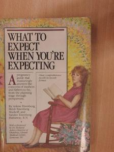 Arlene Eisenberg - What to Expect When You're Expecting [antikvár]