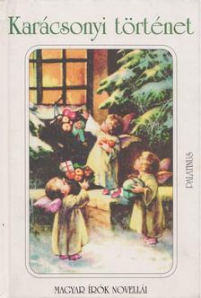HÁY JÁNOS - Karácsonyi történet [antikvár]