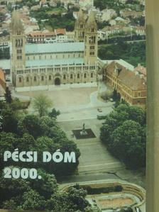 Boros László - Pécsi Szemle 2001. tavasz - különnyomat [antikvár]