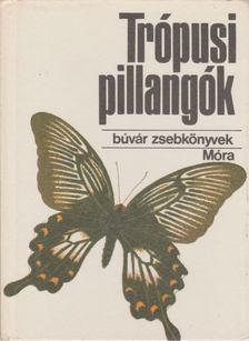 Mészáros Zoltán - Trópusi pillangók [antikvár]