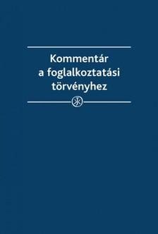 Kovács Szabolcs, Takács Gábor - Kommentár a foglalkoztatási törvényhez [eKönyv: epub, mobi]