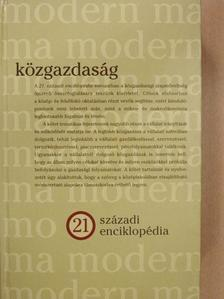 Andor László - Közgazdaság [antikvár]