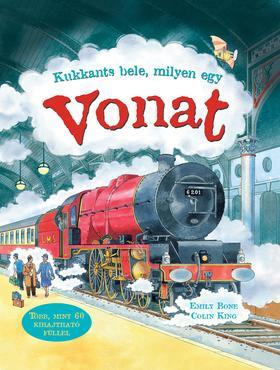 BONE, EMILY - Kukkants bele: Milyen egy vonat?