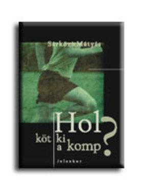 Sárközi Mátyás - Hol köt ki a komp?