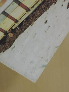 Barkovics Kálmán - Méhészújság 1992. január [antikvár]