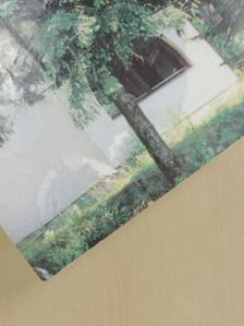 Bede Fazekas Zsolt - Méhészújság 1991. december [antikvár]