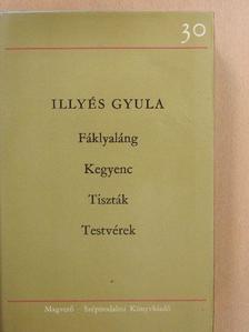 Illyés Gyula - Négy dráma [antikvár]