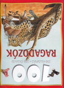 LILLIPUT KÖNYVKIADÓ - RAGADOZÓK - 100 ÁLLOMÁS - 100 KALAND