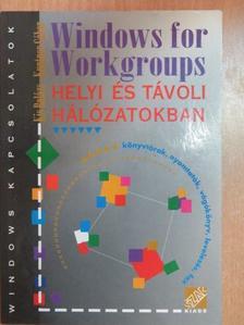 Kis Balázs - Windows for Workgroups [antikvár]