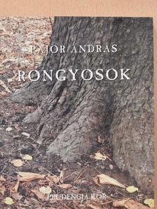 Pajor András - Rongyosok (dedikált példány) [antikvár]