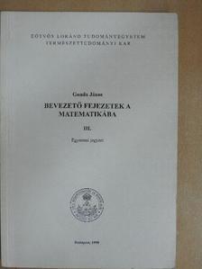 Gonda János - Bevezető fejezetek a matematikába III. [antikvár]