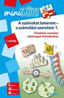LDI231 - A számokat ismerem - a számolást szeretem 1.