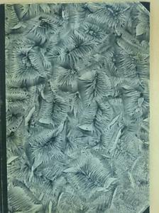 Özv. Szécsy Imréné - A Pesti Hirlap uj szakácskönyve és 1001 jótanács háziasszonyoknak [antikvár]