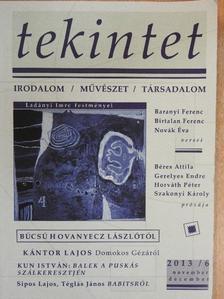Baranyi Ferenc - Tekintet 2013. november-december [antikvár]