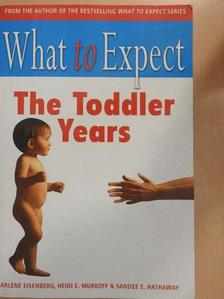 Arlene Eisenberg - What to Expect the Toddler Years [antikvár]