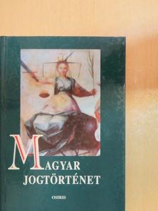Beliznay Kinga - Magyar jogtörténet [antikvár]