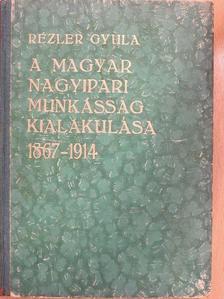 Rézler Gyula - A magyar nagyipari munkásság kialakulása [antikvár]