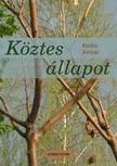 Antal Koós - Köztes állapot [eKönyv: epub, mobi]