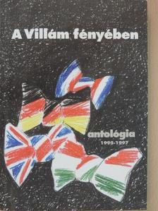 Bagdy Emőke - A Villám fényében - Antológia 1995-1997 [antikvár]