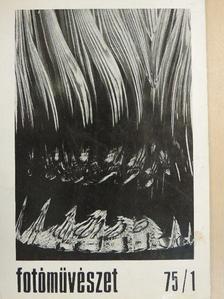 Albertini Béla - Fotóművészet 1975/1. [antikvár]