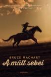Bruce Machart - A múlt sebei [eKönyv: epub, mobi]
