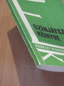 Bilisics Márton - Színjátszók könyve [antikvár]