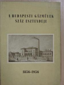 Dr. Salló Antal - A Budapesti Gázművek száz esztendeje [antikvár]