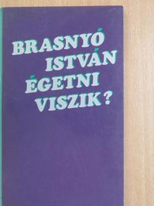 Brasnyó István - Égetni viszik [antikvár]