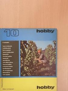 Bajzáth Ferencné - Hobby 10. [antikvár]
