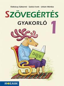 Ratkóczy Gáborné, Szelczi Ivett, Urbán Mónika - MS-1662U Szövegértés gyakorló 1.o.